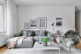 Grå sofa i interiøret: utsikt, bilder, design, kombinasjon med tapet, gardiner, dekor